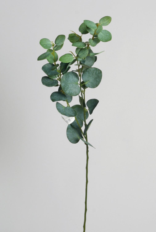 Eucalyptus 79cm