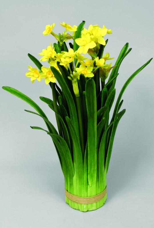 Narcissus in bundle gul 60cm