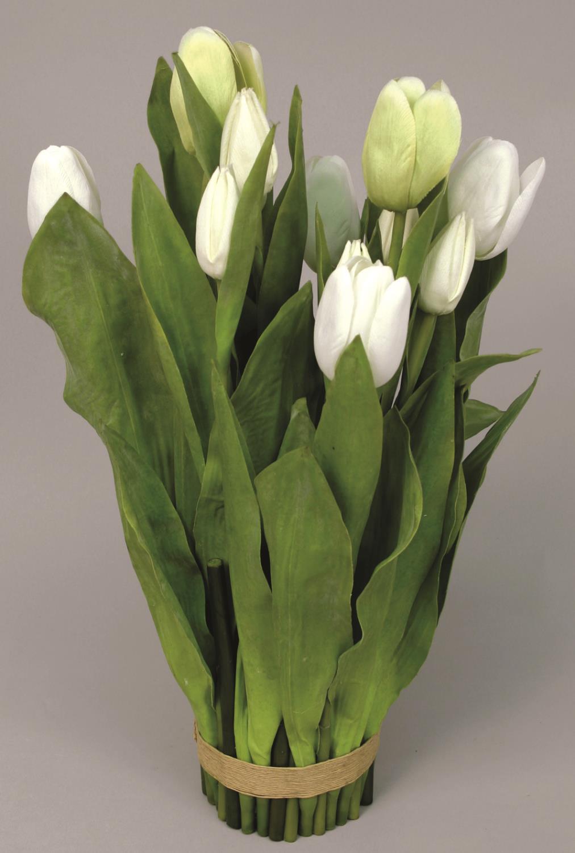 Tulip in bundle cream 40cm