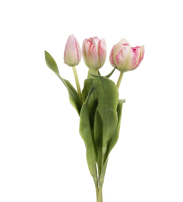 Tulipan, 36cm, ROSA. 1stk.