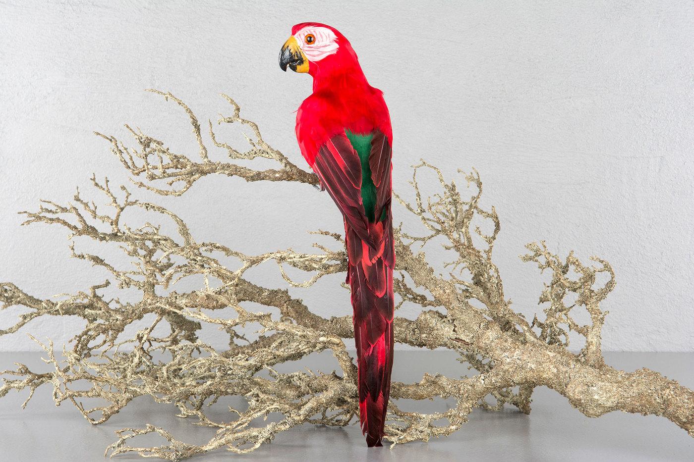 Papegøye rød sittende - 50cm