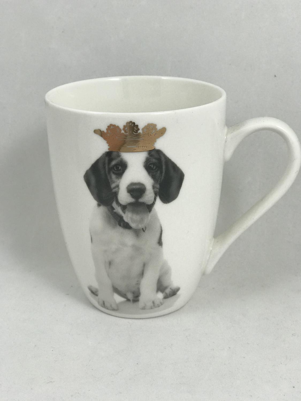 Krus hund med gullkrone