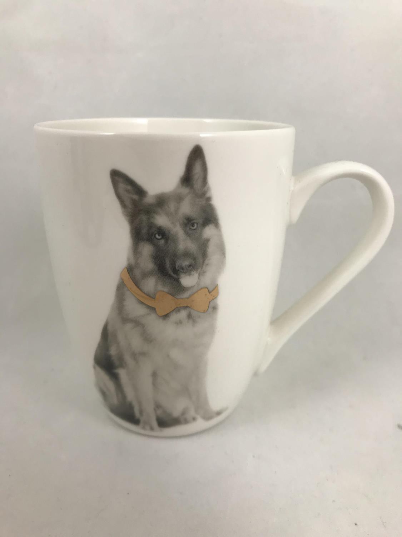 Krus hund med gullsløyfe schaefer